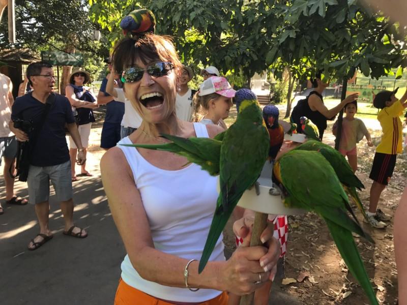冬を抜け出してオーストラリアで夏を楽しむ!プラチナプログラム